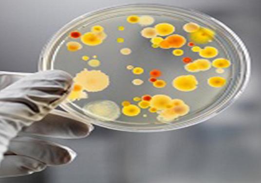 اثر مواد بیولوژیک بر محیط زیست