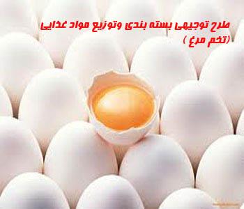 طرح توجيهي بسته بندي و توزيع مواد غذايي (تخم مرغ )