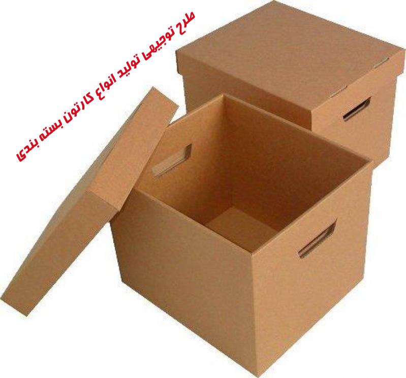 طرح توجيهي توليد انواع كارتون بسته بندي