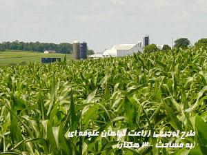 طرح توجيهي زراعت گياهان علوفه اي (به مساحت ۳۰۰ هكتار)