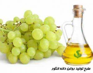 طرح تولید روغن دانه انگور