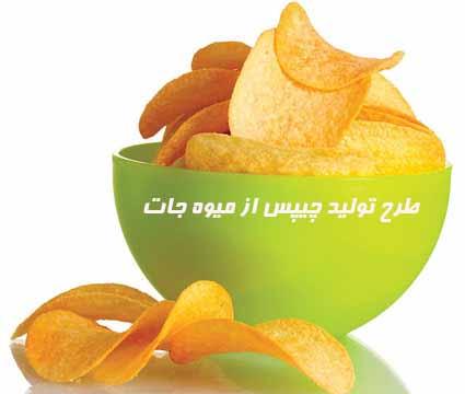 طرح تولید چیپس از میوه جات