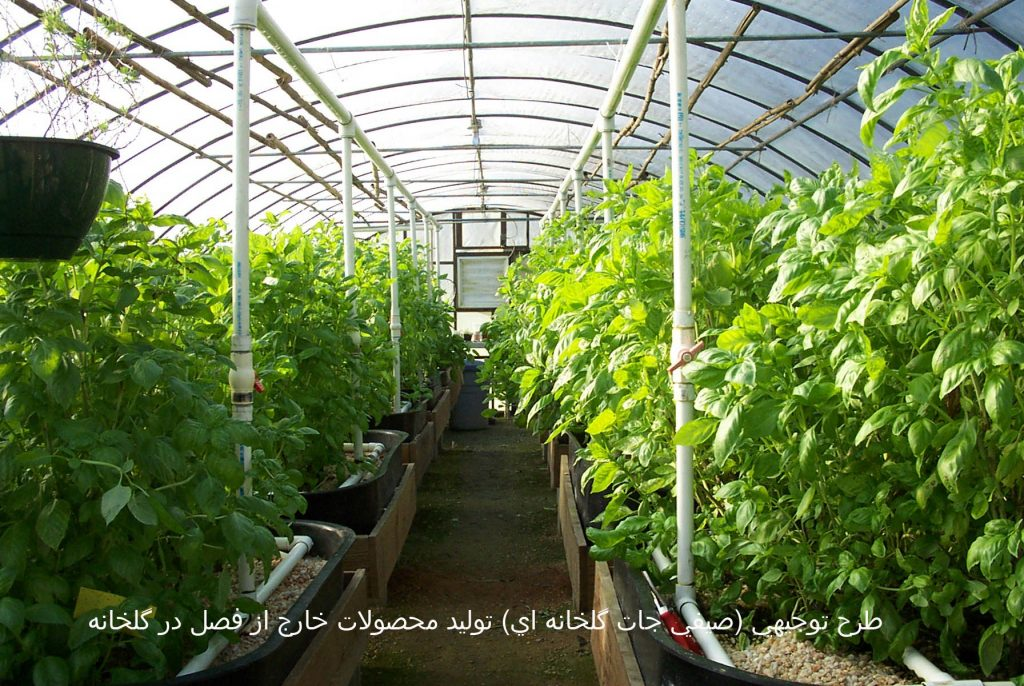 طرح توجيهي (صيفي جات گلخانه اي) توليد محصولات خارج از فصل در گلخانه