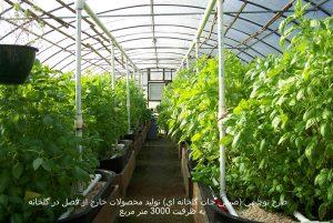 طرح توجيهي توليد محصولات خارج از فصل در گلخانه به ظرفيت ۳۰۰۰ متر مربع