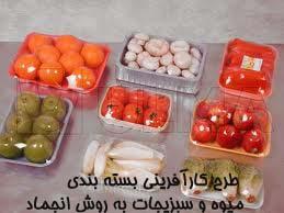 طرح کارآفرینی بسته بندی میوه و سبزیجات به روش انجماد