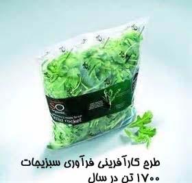 طرح کارآفرینی فرآوری سبزیجات۱۷۰۰ تن در سال
