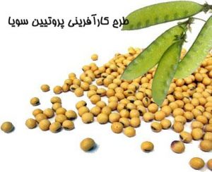 "<span itemprop=""name"">طرح کارآفرینی پروتيين سويا</span>"