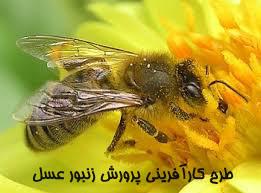 "<span itemprop=""name"">طرح کارآفرینی پرورش زنبور عسل</span>"