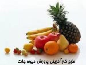 طرح کارآفرینی پرورش میوه جات