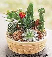 طرح کارآفرینی پرورش گیاهان زینتی