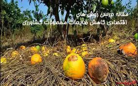 مقاله بررسی روش های اقتصادی کاهش ضایعات محصولات کشاورزی