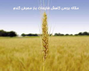مقاله بررسی کاهش ضايعات بذر مصرفی گندم