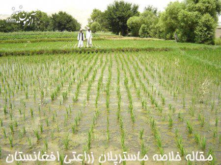مقاله خلاصه ماسترپلان زراعتی افغانستان