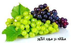 مقاله در مورد انگور