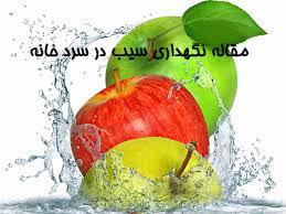مقاله نگهداری سیب در سرد خانه