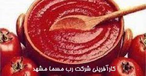 کارآفرینی شرکت رب مسما مشهد