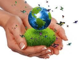 مقاله بهداشت محیط