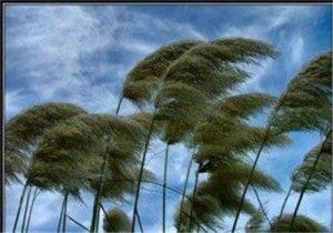 مقاله در مورد باد