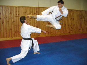 """<span itemprop=""""name"""">مقاله در مورد کاراته</span>"""