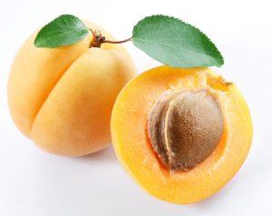 مقاله استاندارد ميوه ها و سبزيها – زردآلو- آئين كار نگهداري درسردخانه