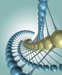 تحقیق در مورد پلیمر