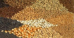 مقاله خوراك دام وطيور وآبزيان- اكسيد منيزيم مورد مصرف در مكمل هاي معدني – ويژگي ها و روش هاي آزمون