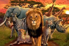 مقاله دنیای حیوانات