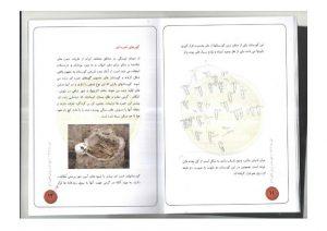 کتاب باستان شناسی آیین تدفین