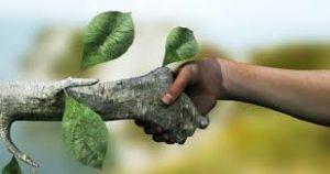 تحقیق محیط زیست بحران در راه است